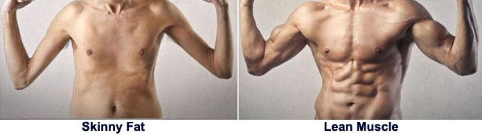 Skinny fat vs burn the fat man