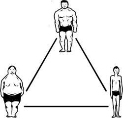 Os três tipos de corpo; Mesomorfo, Endomorfo, Ectomorfo
